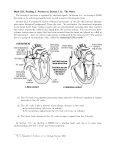 Math 155. Reading 3. Preview to Section 1.11: The Heart. Section