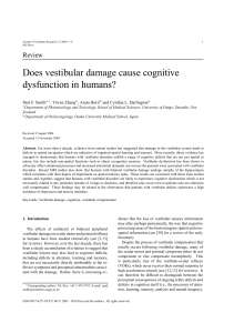 Does vestibular damage cause cognitive dysfunction in humans?