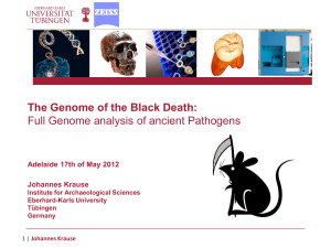 The Genome of the Black Death: Full Genome analysis of ancient