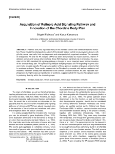 Acquisition of Retinoic Acid Signaling Pathway and