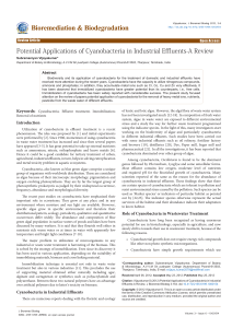 Potential Applications of Cyanobacteria in Industrial Effluents