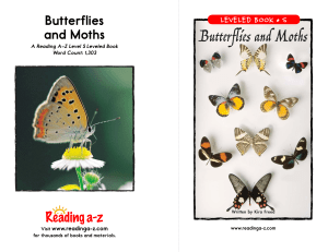 and Moths Butterflies and Moths LEVELED BOOK • S