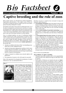 Captive breeding and the role of Zoo`s