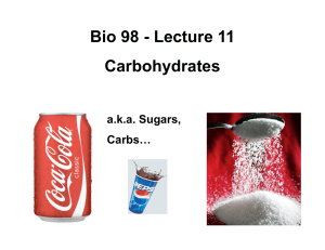 Bio 98 - Lecture 11 Carbohydrates