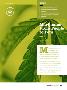 Marijuana: From People to Pets
