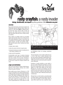 Rusty Crayfish: A Nasty Invader