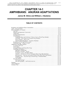 Volume 2, Chapter 14-1: Amphibians: Anuran Adaptations