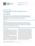 Bacteriophages of Soft Rot Enterobacteriaceae
