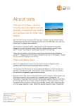 About oats - Swedish Oat Fiber