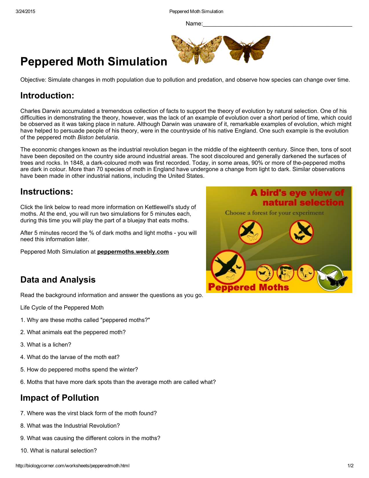 Peppered Moth Simulation Worksheet Answers - Peppered Moth ...