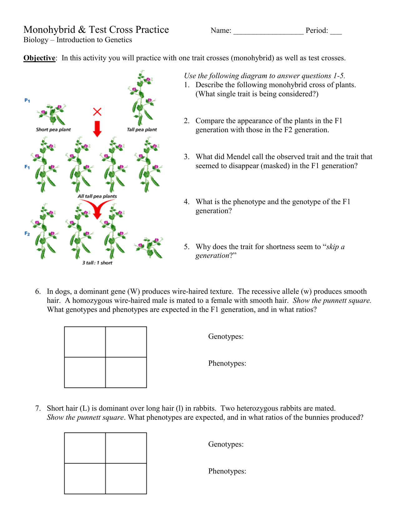 Monohybrid And Test Cross Practice Problems
