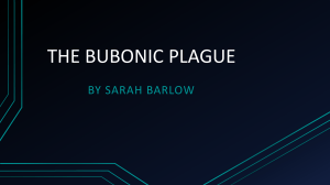 the bubonic plague