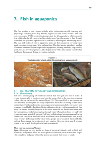 7. Fish in aquaponics - Food and Agriculture Organization of the