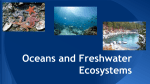 Oceans and Freshwater Ecosystems