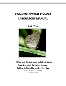 biol 1403: animal biology laboratory manual