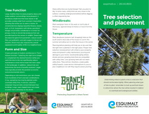 Tree selection and placement