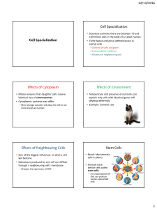Cell Specialization and Levels of Organization