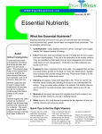 Essential Nutrients - Right Weigh Clinic