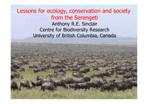 Lessons for ecology, conservation and society from the Serengeti