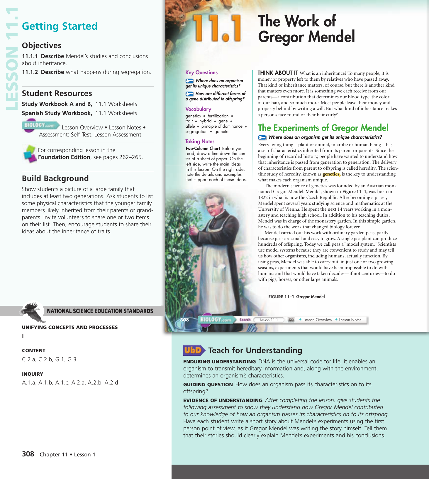 Biology 111 The Work Of Gregor Mendel Worksheet Answers ...