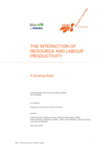the interaction of resource and labour productivity