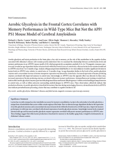 Aerobic Glycolysis in the Frontal Cortex Correlates with Memory