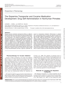 The Dopamine Transporter and Cocaine Medication Development
