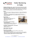Holter Monitoring in Cats