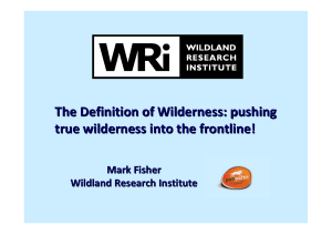 The Definition of Wilderness: pushing true wilderness into the frontline!