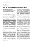 MicroReview Metal ion homeostasis and intracellular