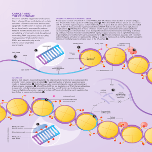 CaNCer aND THe ePIGeNOMe