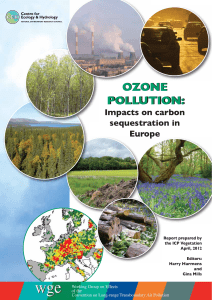 ozone pollution - the ICP Vegetation