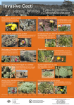 Identification poster for invasive cacti