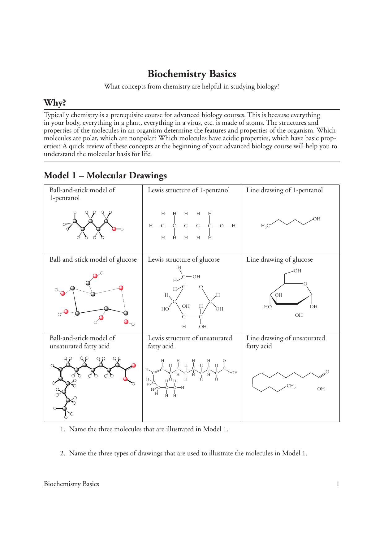 Biological Molecules Pogil Answer Key Pdf - Biomolecule ...