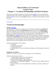 Natural History of Vertebrates Lecture Notes Chapter 2
