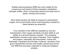 Sulfate-reducing bacteria (SRB) are most notable for the