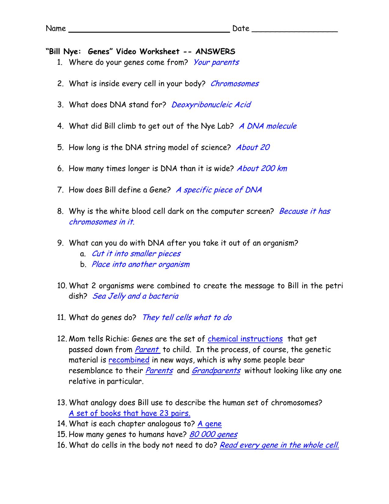Bill Nye Genes Video Worksheet