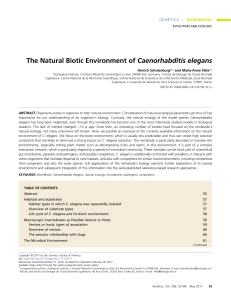 The Natural Biotic Environment of Caenorhabditis elegans