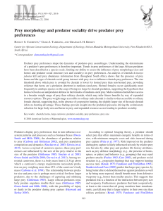Prey morphology and predator sociality drive predator prey