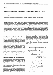 Biological Functions of Haptoglobin - New Pieces to an