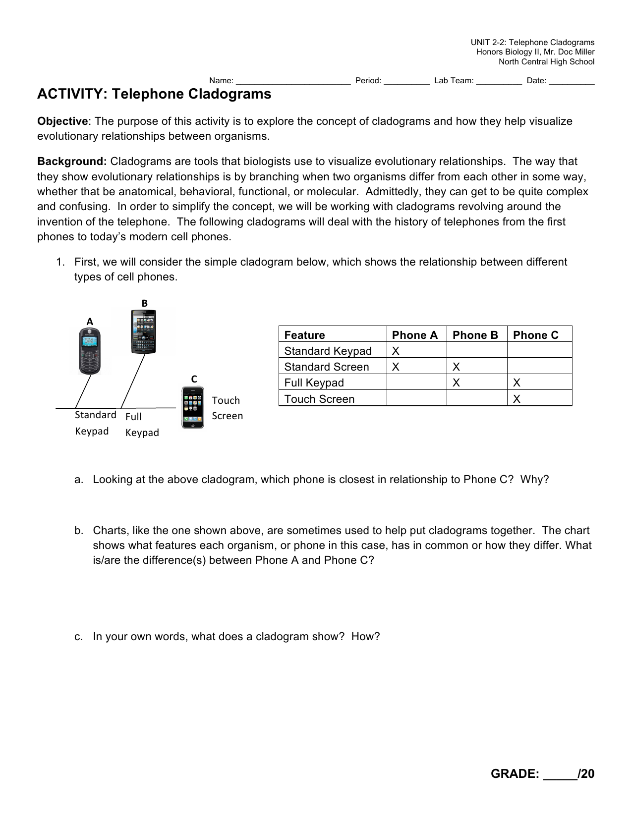 strawberry dna extraction lab report answers