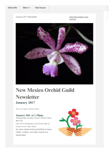 NMOG January 2017 - New Mexico Orchid Guild