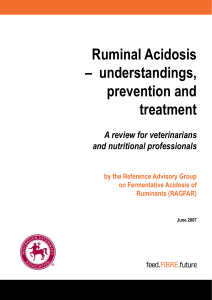 Ruminal Acidosis – understandings, prevention and treatment
