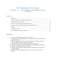 The Physiology of the Senses Lecture 5