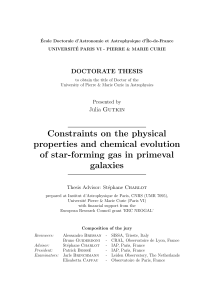 Constraints on the physical properties and chemical evolution of star