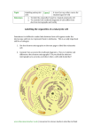 Level Labelling the organelles of a eukaryotic cell