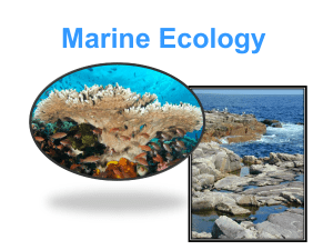 Level 2_ZOOL_03 - Marine Ecology