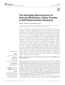 The Emerging Neuroscience of Intrinsic Motivation: A New Frontier