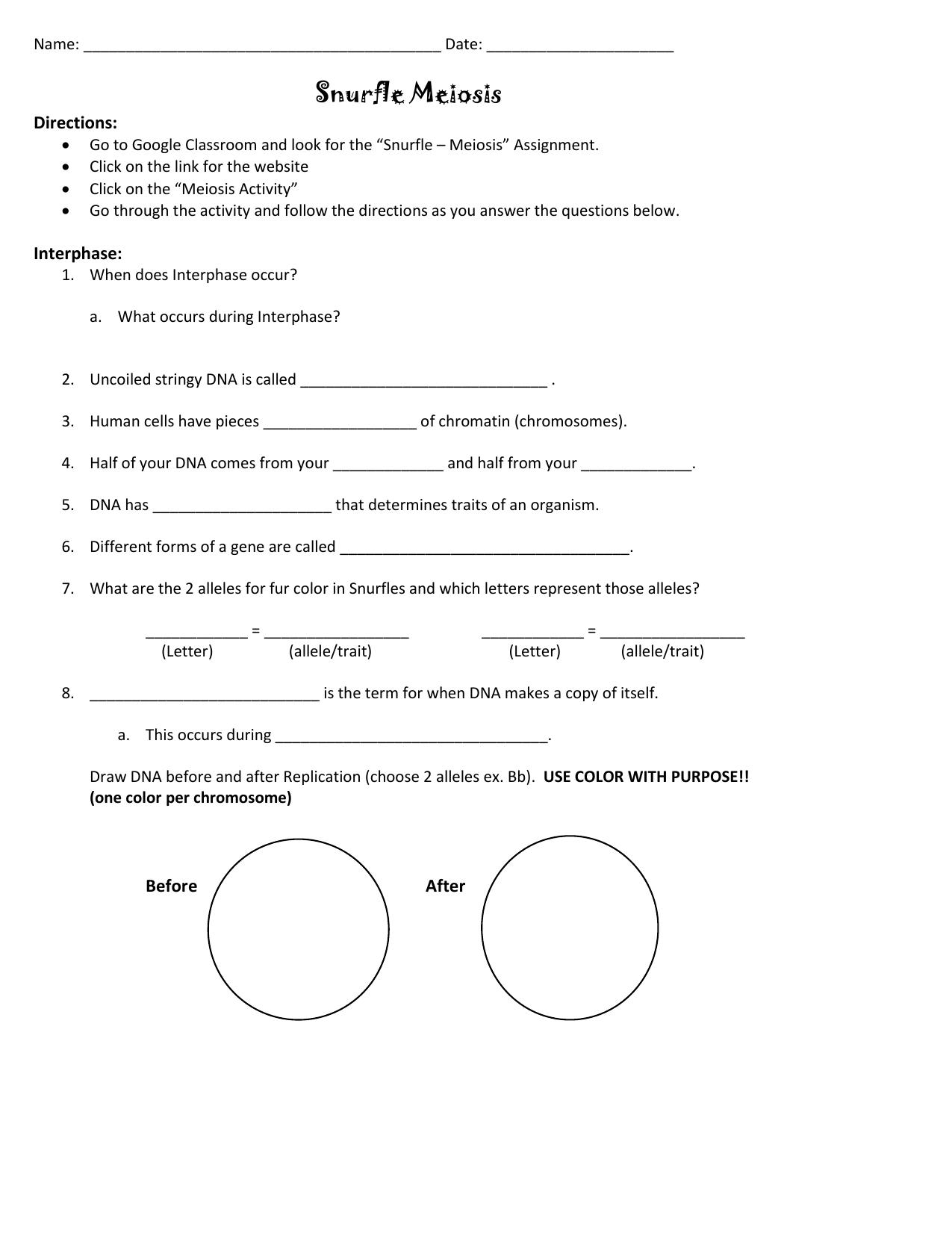 Snurfle Meiosis Worksheet - Snurfle Meiosis Worksheets ...