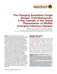 The Emerging Amphibian Fungal Disease, Chytridiomycosis: A Key